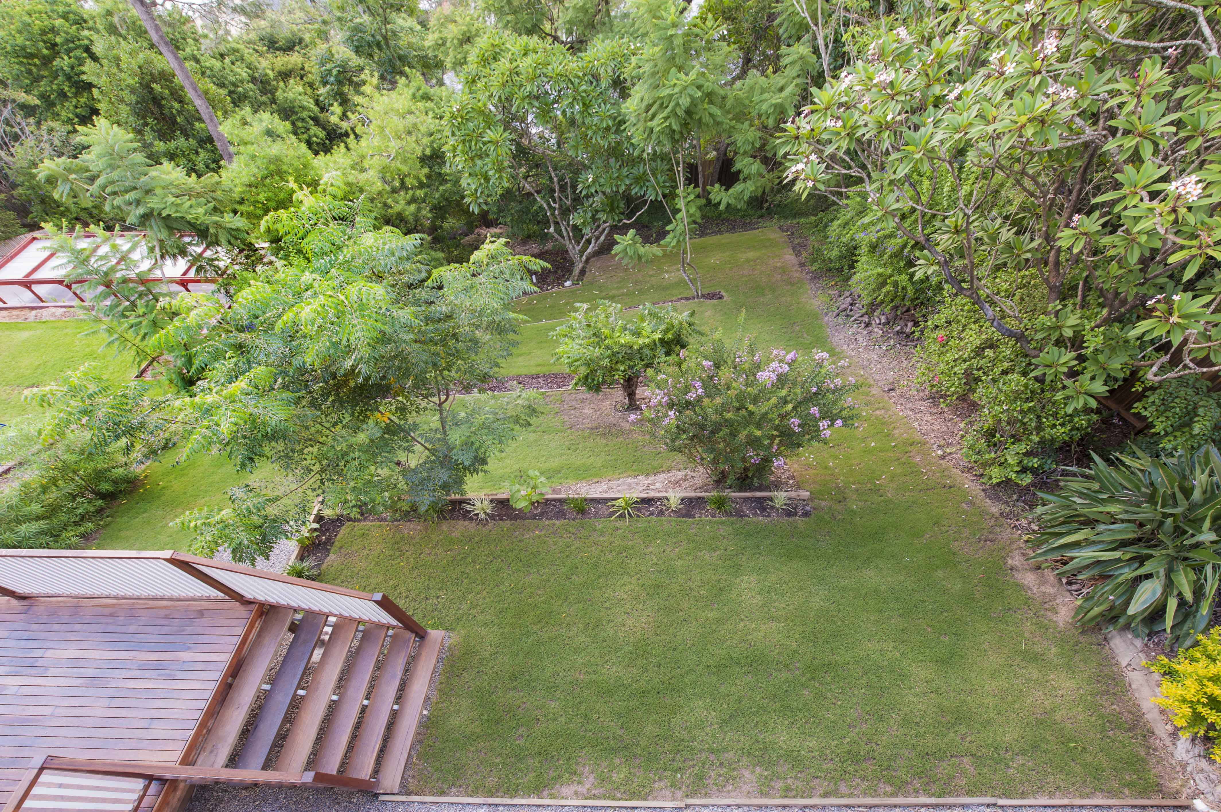 Downwards view of green backyard
